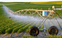 بروجردی:استفاده از روشهای نوین کشاورزی سبب تحقق اقتصاد مقاومتی میشود