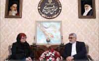 بروجردی در دیدار با مدیر اجرایی شبکه خلع سلاح هستهای:مخالفت ایران با بمب هستهای اصلی پایدار است